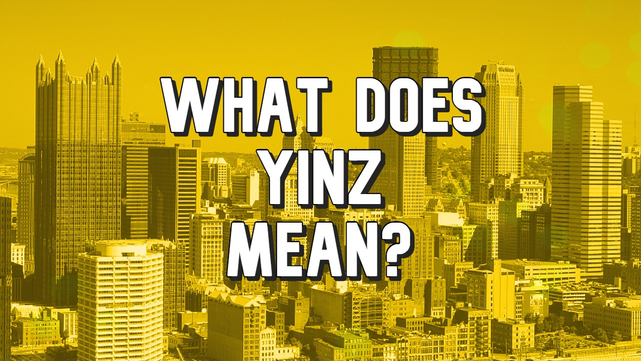 What does yinz mean